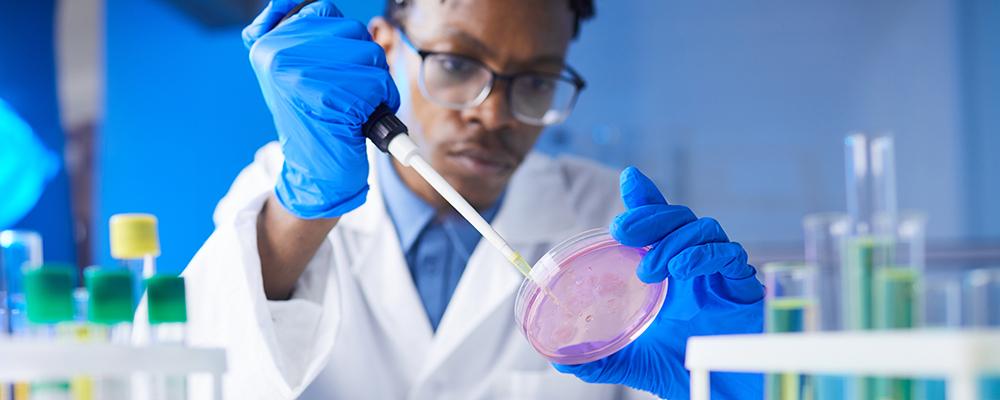 African American doctor testing sample in a petri dish